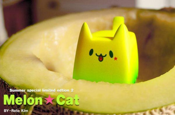 meloncat.jpg