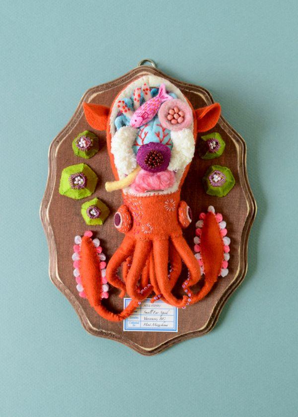 small ear squid.jpg