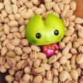 pistachiokookienogoodatdekornerlarge.png