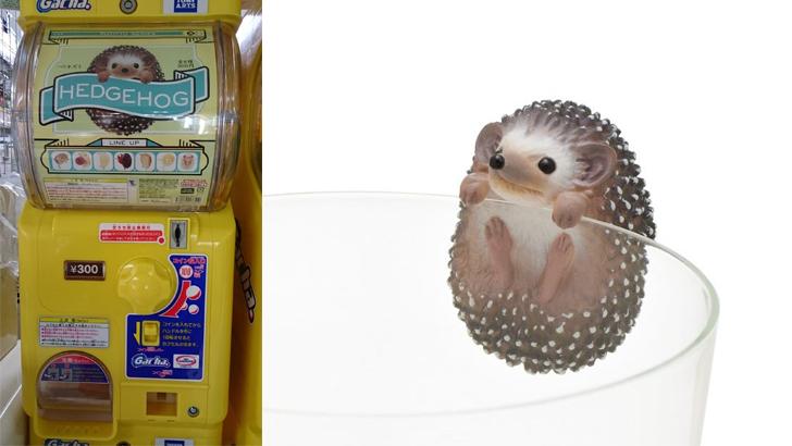 Hedgehog cup clingers